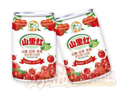 椰栗山里红复合果汁饮料罐装