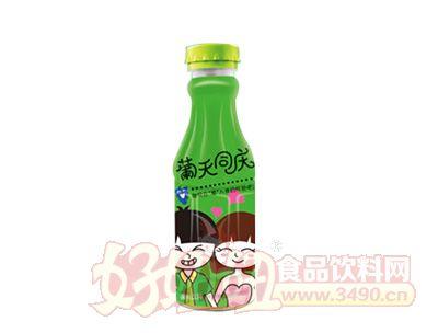 葡天同庆果味饮料500ml