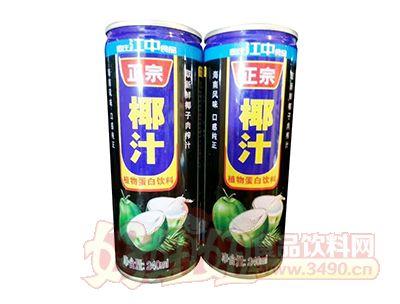 正宗椰汁植物蛋白饮料240ml
