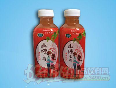 果歌山楂之吻果汁饮料500ml