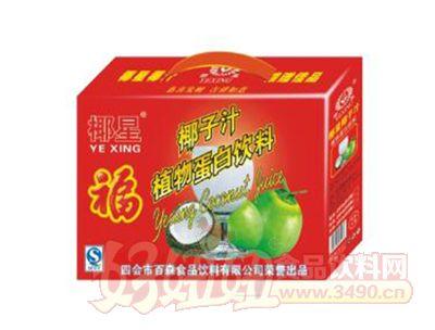 椰星椰子汁植物蛋白饮料