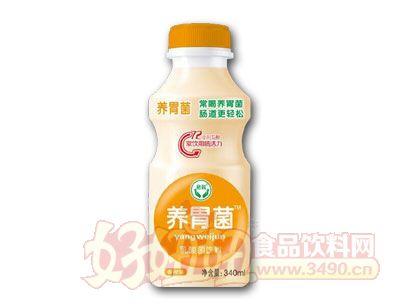 养胃菌乳酸菌饮料香橙味340ml