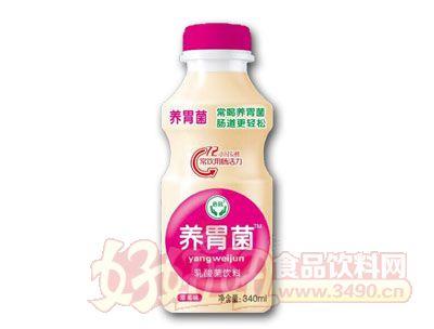 养胃菌乳酸菌饮料草莓味340ml