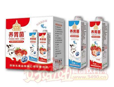 养胃菌乳酸菌饮料箱装
