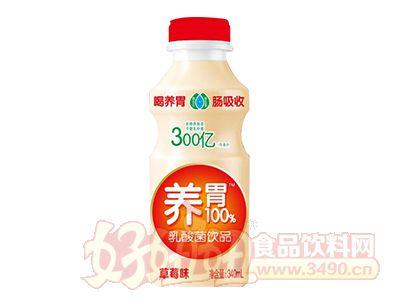 好彩头养胃100%乳酸菌饮品草莓味340ml