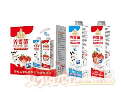 启致养胃菌发酵型乳酸菌饮品1L