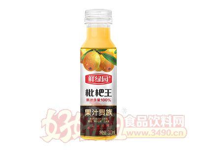 鲜绿园枇杷王果汁饮料300ml