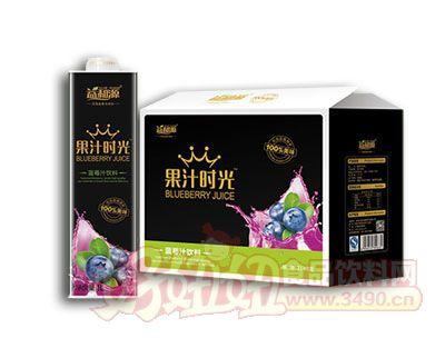 益和源果汁时光蓝莓汁饮料1L×8盒