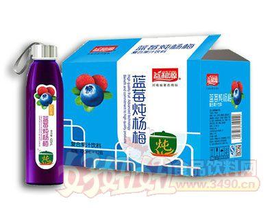 益和源蓝莓炖杨梅420ml×12瓶