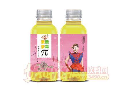 菠萝蜜瓜π500ml