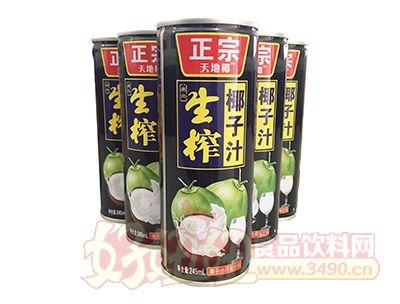 正宗天地椰果肉生榨椰子汁风味饮料245ml