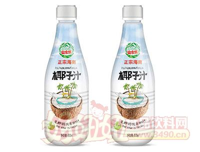 山水情正宗海南椰子汁植物蛋白饮料500ml
