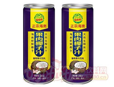 山水情正宗海南果肉椰子汁植物蛋白饮料245ml