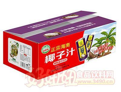 山水情正宗海南椰子汁植物蛋白饮料245mlx24瓶