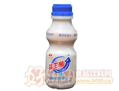 康伴益生菌乳酸菌饮品原味338ml