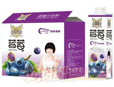 秘典椰花香蓝莓汁饮料1L×6瓶