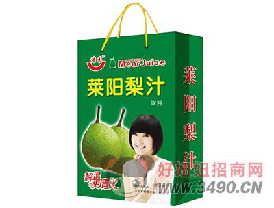 浩园莱阳梨汁饮料手提袋
