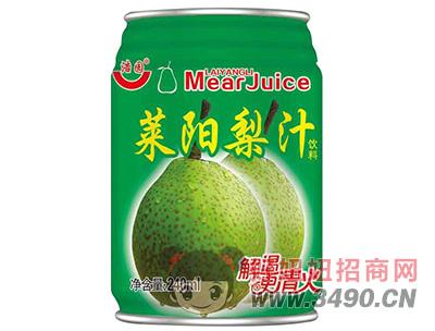 浩园莱阳梨汁饮料240ml