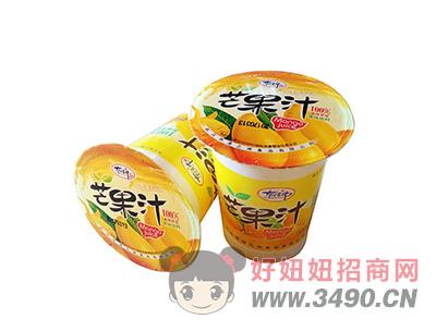 洛之洲芒果汁果味饮料