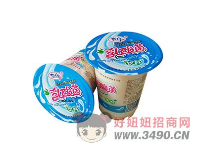 洛之洲乳酸菌饮料300ml