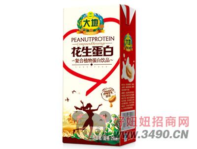 大地花生蛋白复合植物蛋白饮品250g