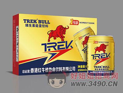 能量饮料250mlX24罐