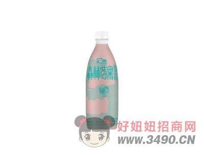 汇源石榴苹果 混合果汁饮料450ml