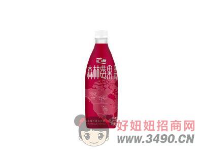 汇源蓝莓蔓越莓 混合果汁饮料450ml