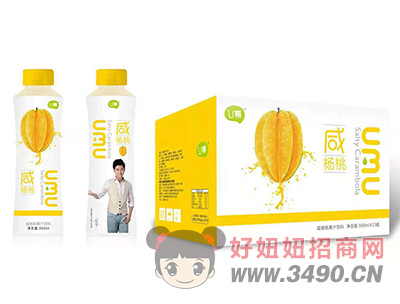 U幕咸杨桃果汁饮料500ml×15瓶