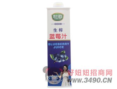 世鸿生榨蓝莓汁1.5L