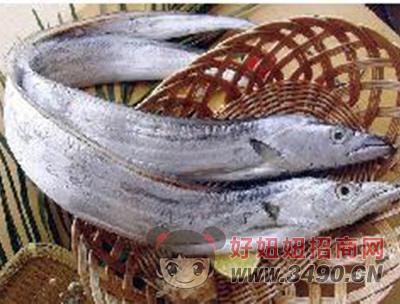 浙江特产钓带鱼段