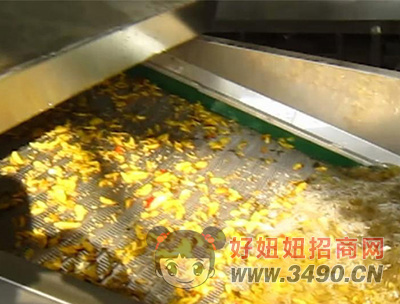 连续式水果蔬菜清洗机