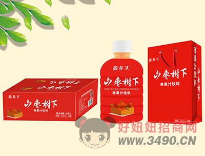 鑫养卫山枣树下枣果汁饮料350ml×15瓶