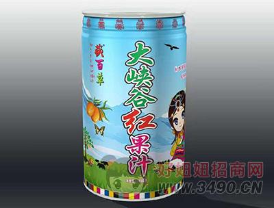 藏百草大峡谷红果汁310ml