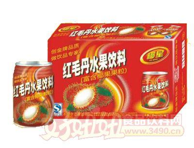 椰星红毛丹水果饮料250ml×24罐