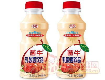 菌牛红枣味乳酸菌饮品350ml