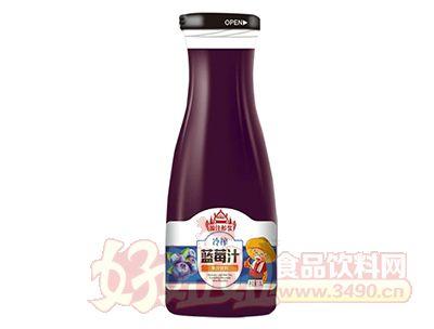 源汁醇浆冷榨蓝莓汁饮料1.5L