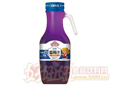 源汁醇浆冷榨蓝莓汁1.5L