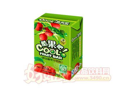 野生酸枣汁饮料250ML