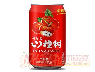 你最有才咱家的山楂树野山楂果肉果汁饮料358ml