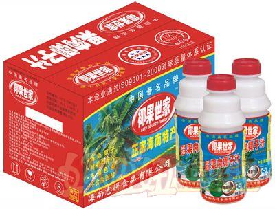 500mlx15PT瓶果肉椰汁