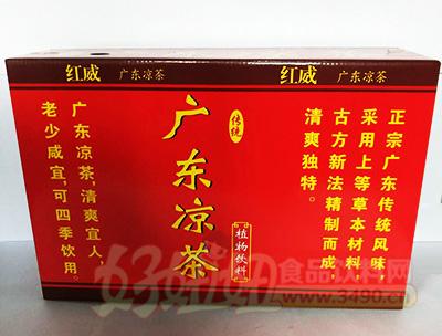 广东凉茶植物饮料箱装