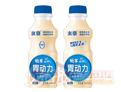 畅享胃动力乳酸菌饮品340ml蓝