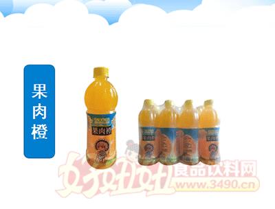 四季阳光 果肉橙 500ml×12瓶