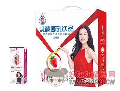 宜养乳酸菌草莓味lehu国际app下载250ml×12盒