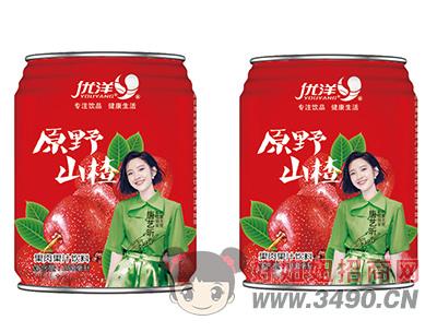 优洋原野山楂果肉果汁饮料250ml粗罐