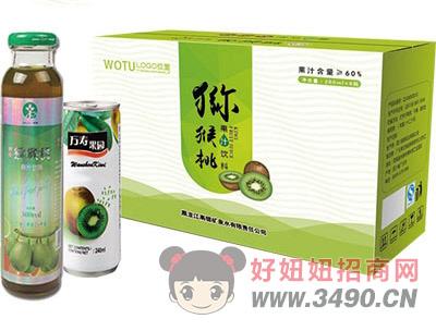 万寿果园猕猴桃汁