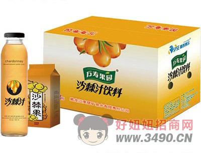 万寿果园沙棘汁
