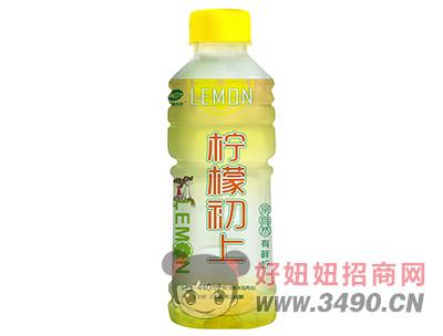 檬泰天柠柠檬初上果味饮料440ml