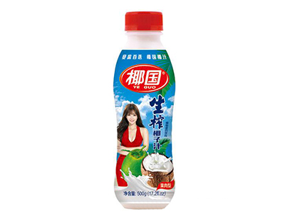 椰国生榨椰子汁500g